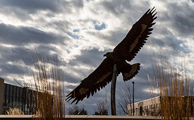 Eagle sculpture on campus