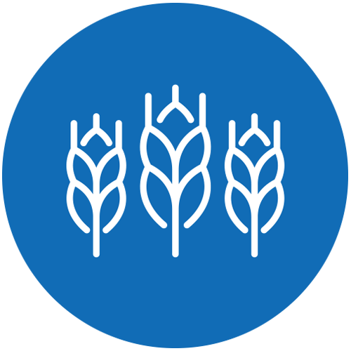 agriculture and equine pathway icon